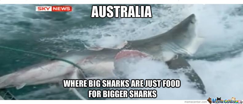 meanwhile-in-australia_o_1998107.jpg.88e
