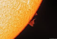 Quark Solar Images