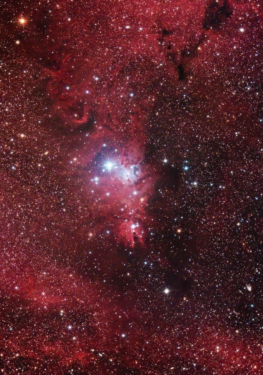 the-christmas-tree-cluster-and-cone-nebula-in-monoceros_4102837589_o.jpg