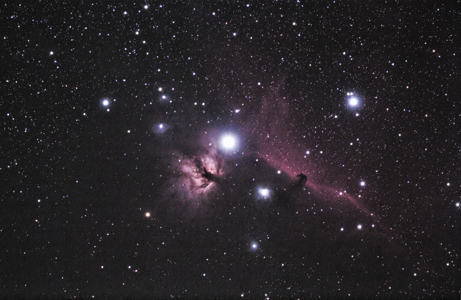 Horsehead & Flame Nebulas